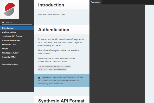 Synthesio API