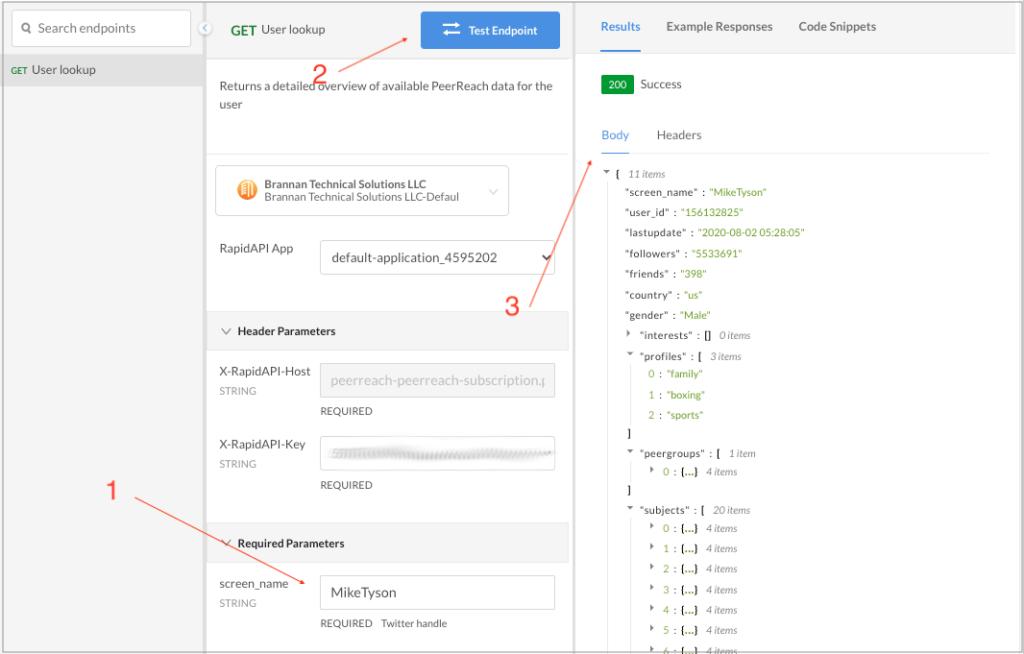 Testing the PeerReach API in the RapidAPI dashboard.